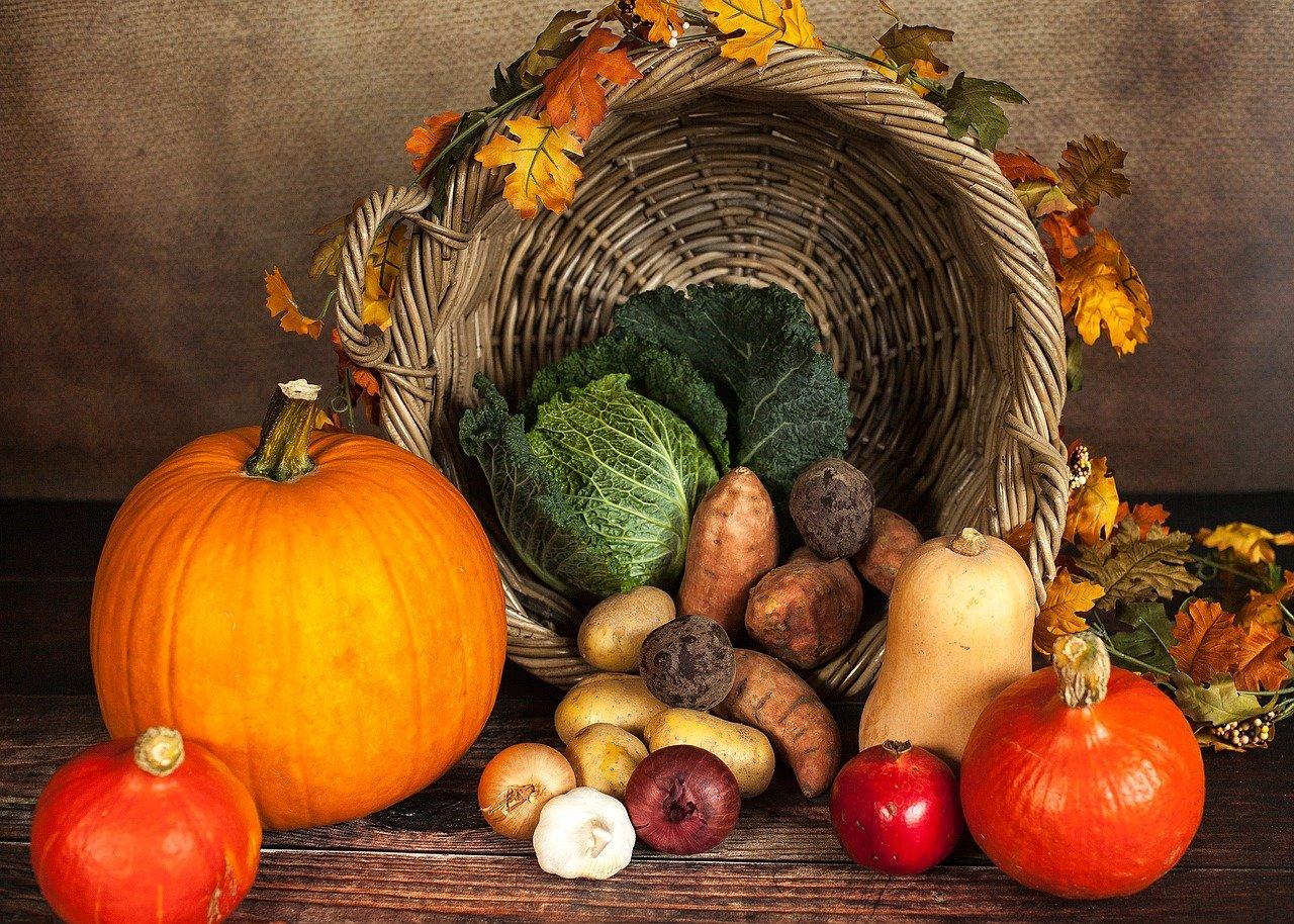 pumpkin-1768857_1280